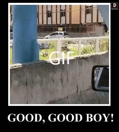 GOOD, GOOD BOY!
