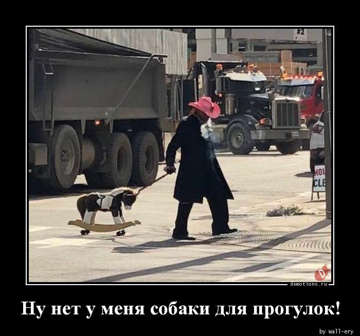 Ну нет у меня собаки для прогулок!