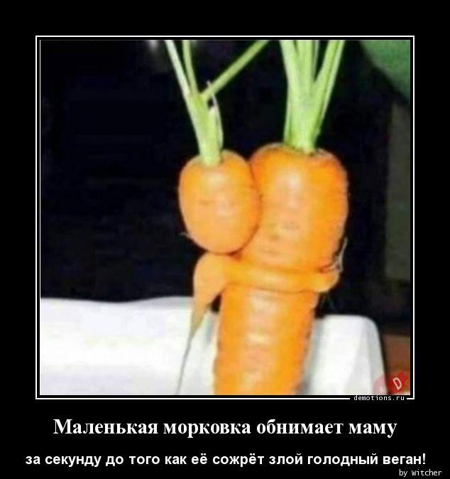 Маленькая морковка обнимает маму