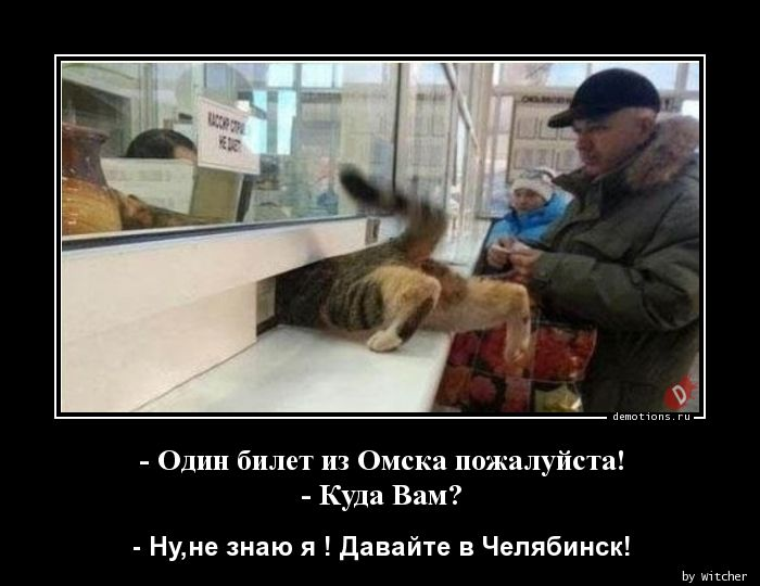 - Один билет из Омска пожалуйста! - Куда Вам?