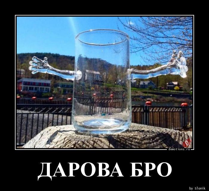 ДАРОВА БРО