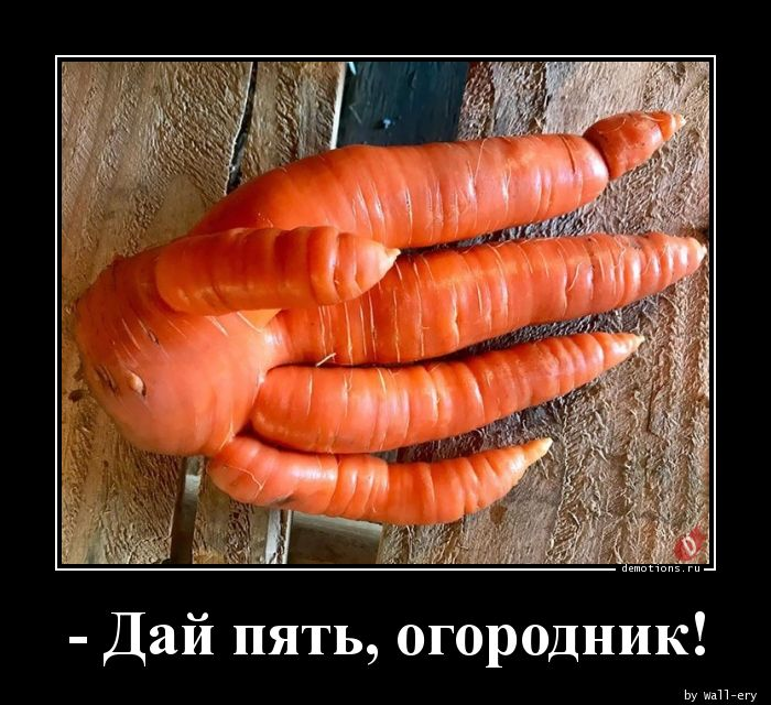 - Дай пять, огородник!