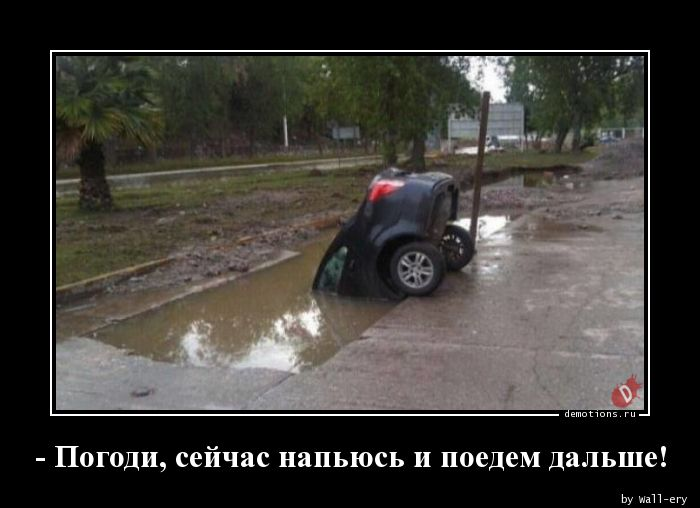 - Погоди, сейчас напьюсь и поедем дальше!