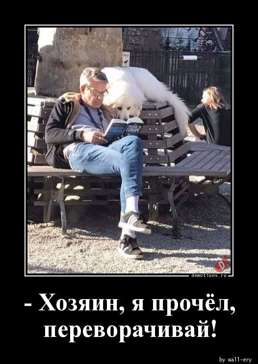 - Хозяин, я прочёл, переворачивай!