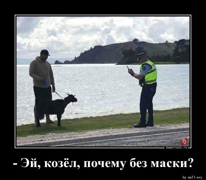 - Эй, козёл, почему без маски?