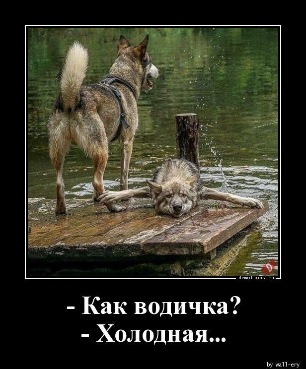 - Как водичка? - Холодная...