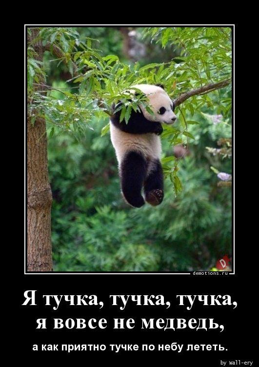 Я тучка, тучка, тучка, я вовсе не медведь,