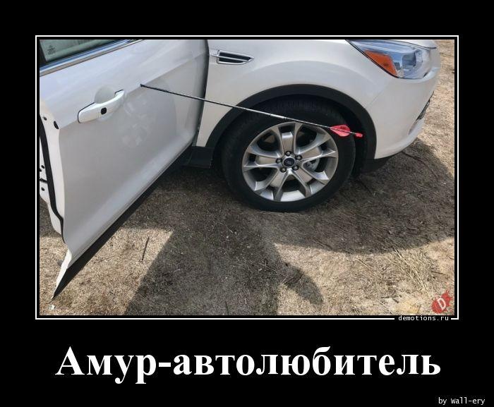 Амур-автолюбитель