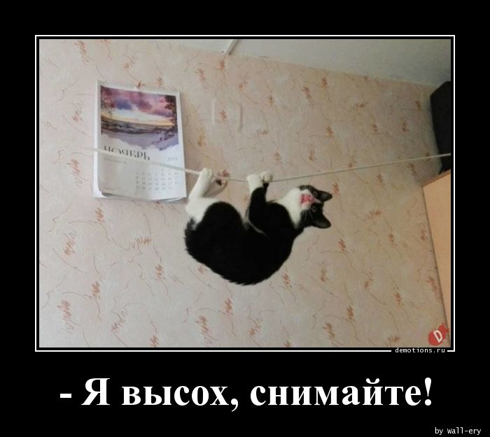- Я высох, снимайте!