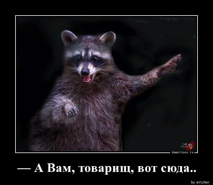 — А Вам, товарищ, вот сюда..