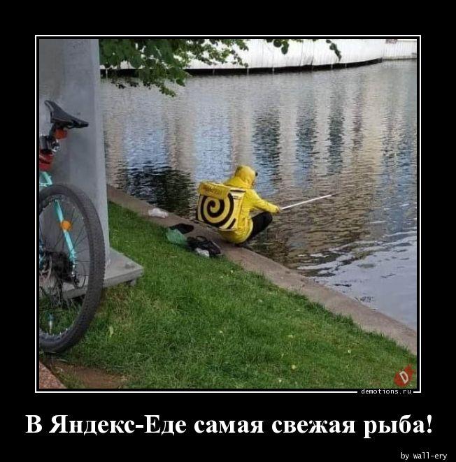 В Яндекс-Еде самая свежая рыба!