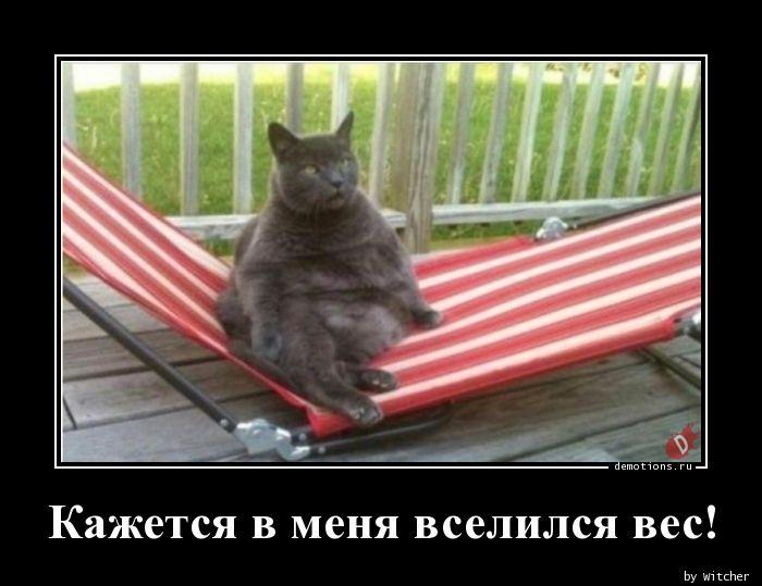 Кажется в меня вселился вес!