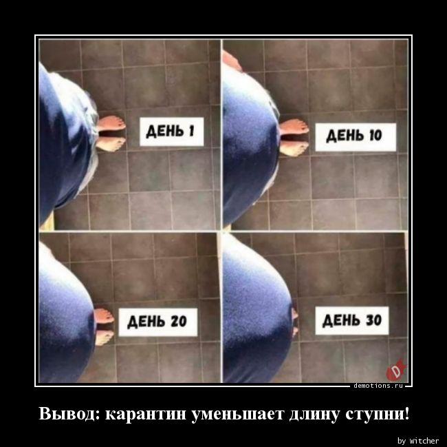 Вывод: карантин уменьшает длину ступни!