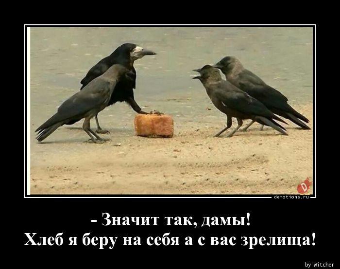 - Значит так, дамы! Хлеб я беру на себя а с вас зрелища!