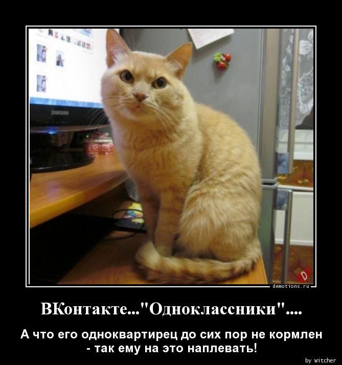 ВКонтакте...