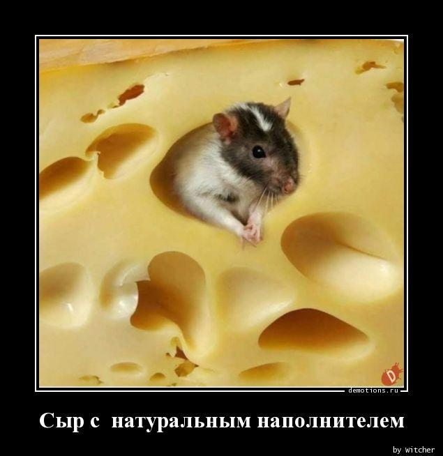 Сыр с  натуральным наполнителем