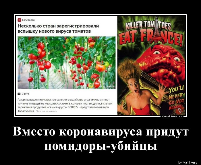 Вместо коронавируса придут помидоры-убийцы