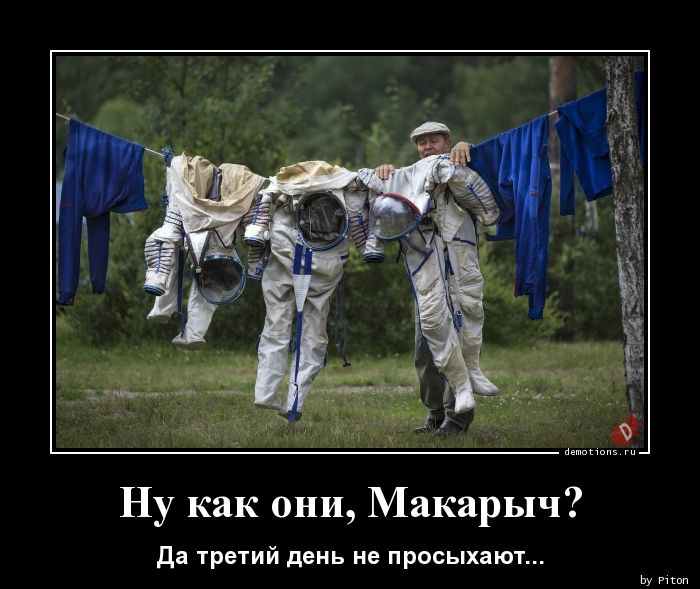 Ну как они, Макарыч?