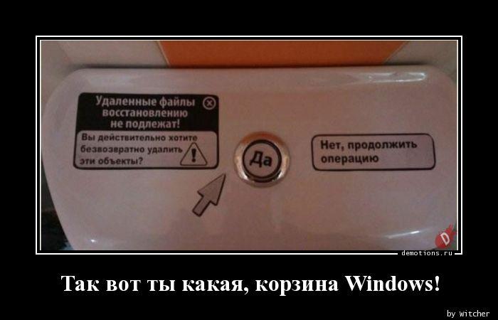 Так вот ты какая, корзина Windows!