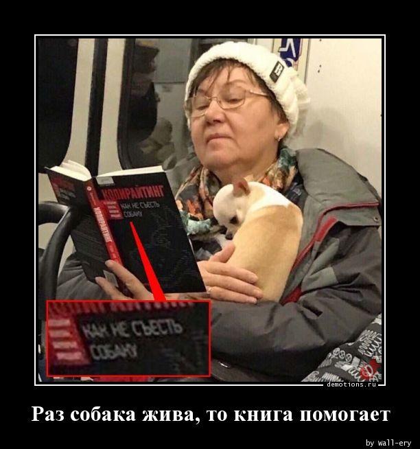 Раз собака жива, то книга помогает