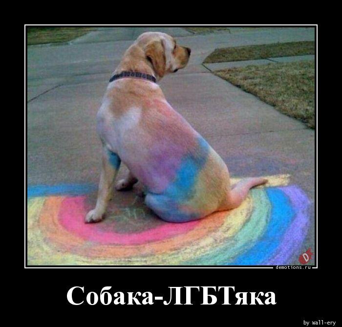 Собака-ЛГБТяка