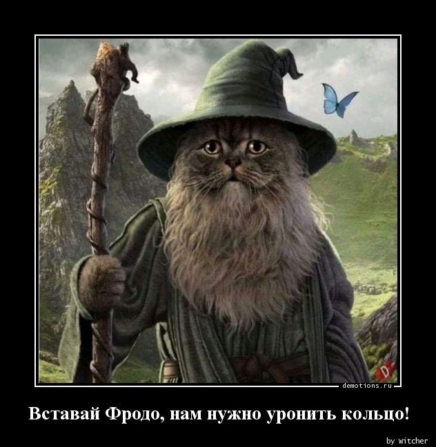 Вставай Фродо, нам нужно уронить кольцо!