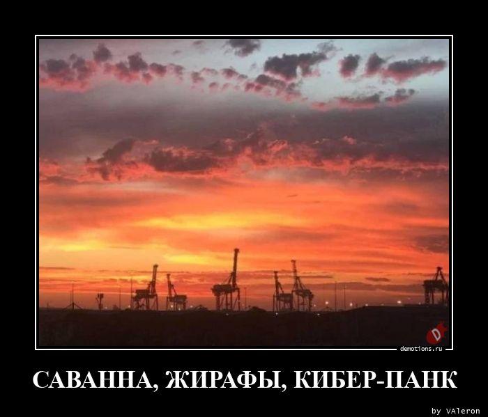 САВАННА, ЖИРАФЫ, КИБЕР-ПАНК