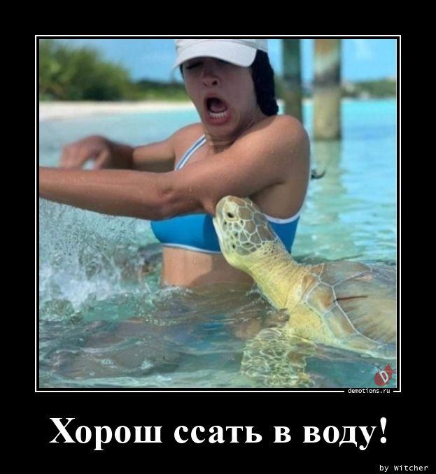 Хорош ссать в воду!