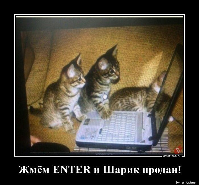 Жмём ENTER и Шарик продан!