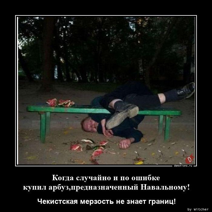 Когда случайно и по ошибке купил арбуз,предназначенный Навальному!