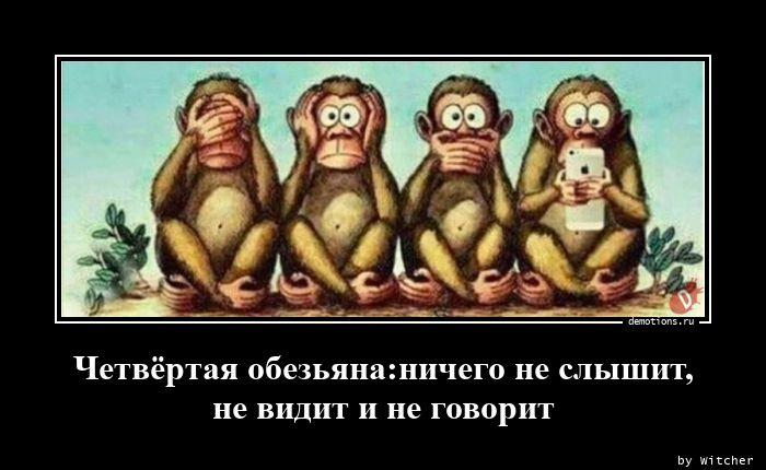 Четвёртая обезьяна:ничего не слышит, не видит и не говорит
