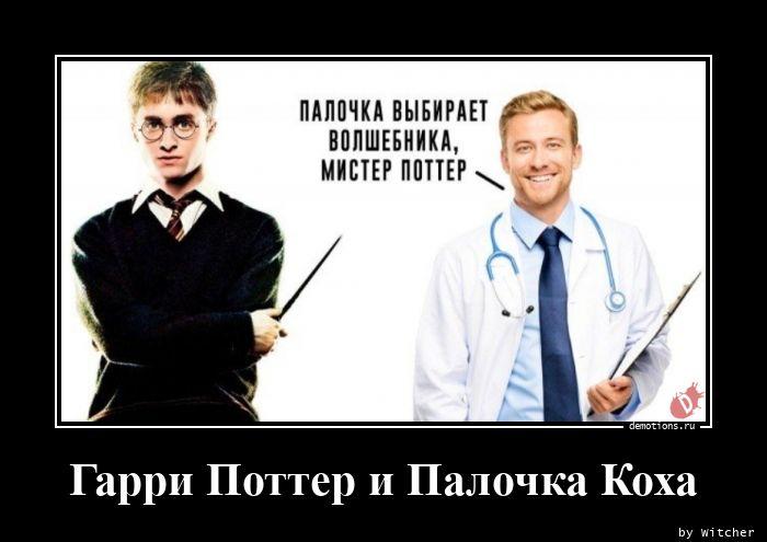 Гарри Поттер и Палочка Коха