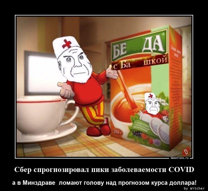 Сбер спрогнозировал пики заболеваемости COVID