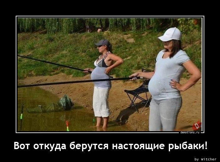 Вот откуда берутся настоящие рыбаки!