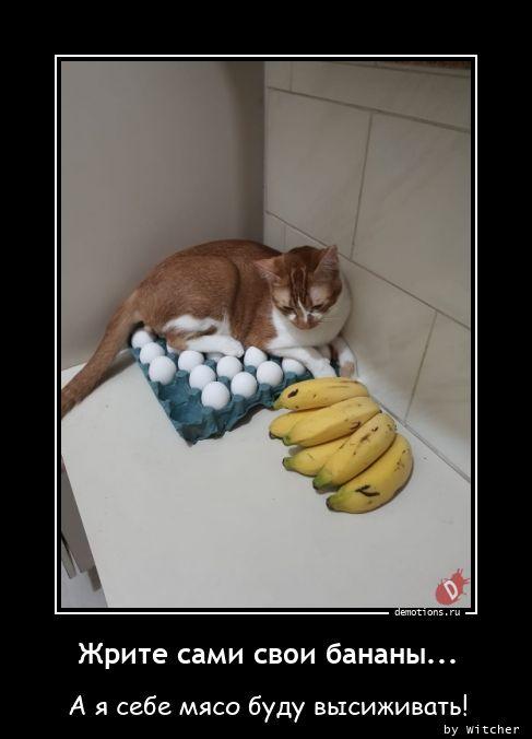 Жрите сами свои бананы...