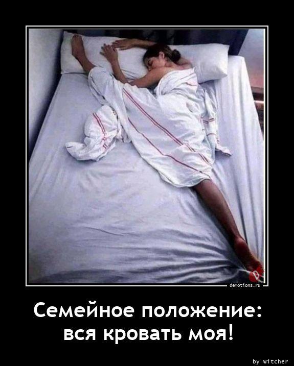 Семейное положение: вся кровать моя!