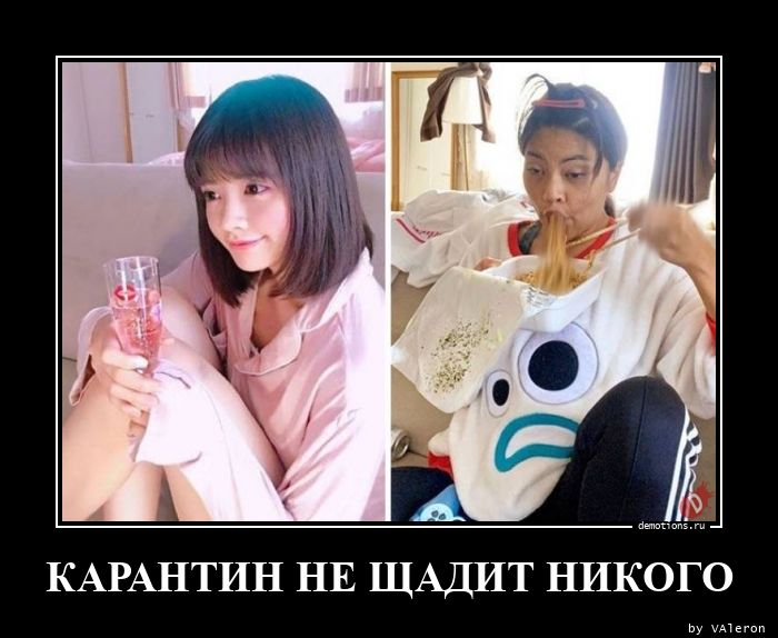 КАРАНТИН НЕ ЩАДИТ НИКОГО