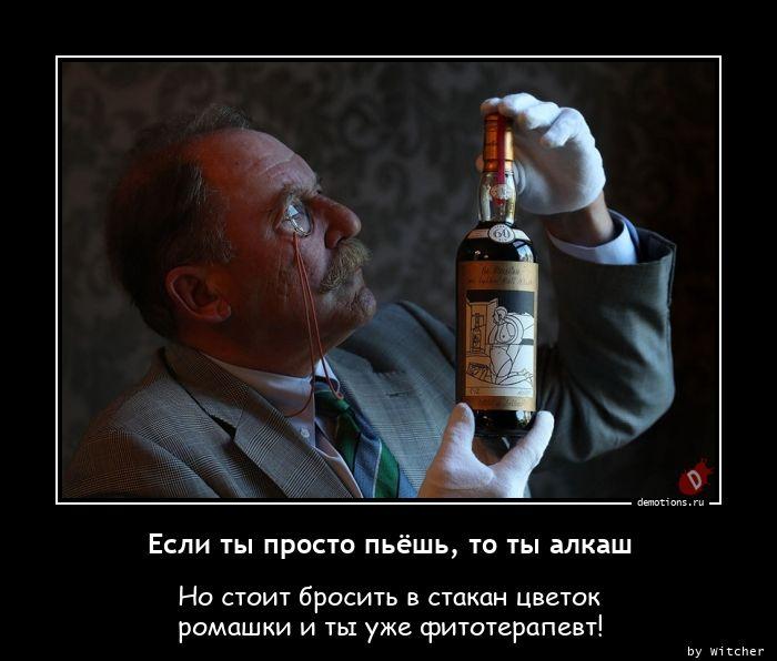 Если ты просто пьёшь, то ты алкаш