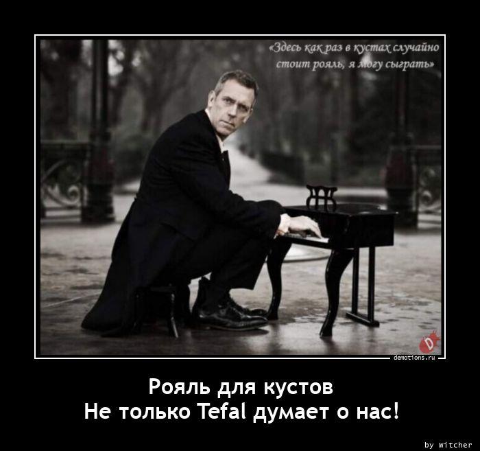 Рояль для кустов Не только Tefal думает о нас!