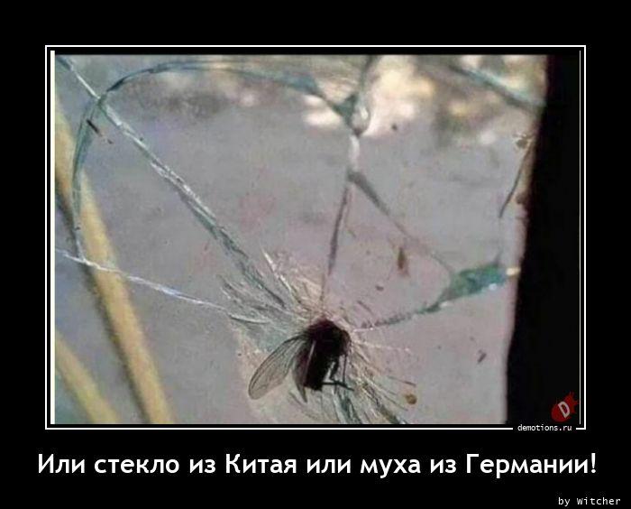 Или стекло из Китая или муха из Германии!