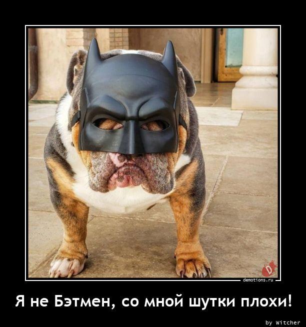 Я не Бэтмен, со мной шутки плохи!