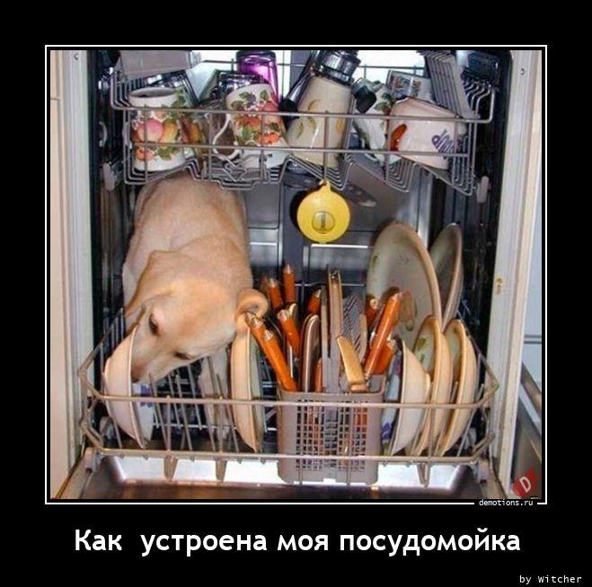 Как  устроена моя посудомойка