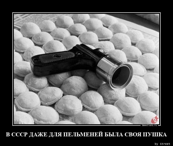 В СССР ДАЖЕ ДЛЯ ПЕЛЬМЕНЕЙ БЫЛА СВОЯ ПУШКА