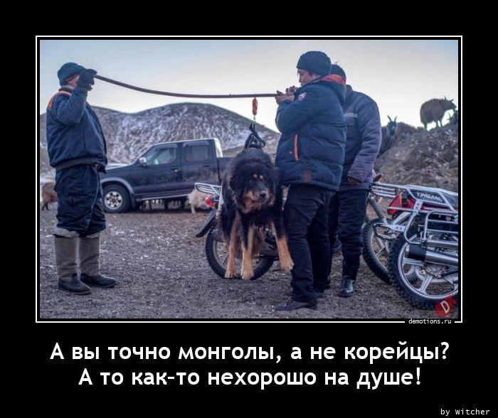 А вы точно монголы, а не корейцы?  А то как–то нехорошо на душе!