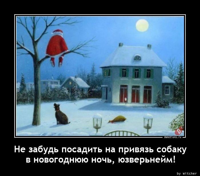Не забудь посадить на привязь собаку в новогоднюю ночь, юзверьнейм!