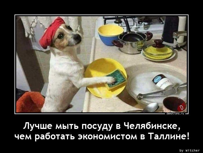 Лучше мыть посуду в Челябинске, чем работать экономистом в Таллине!