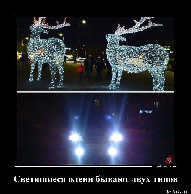 Светящиеся олени бывают двух типов