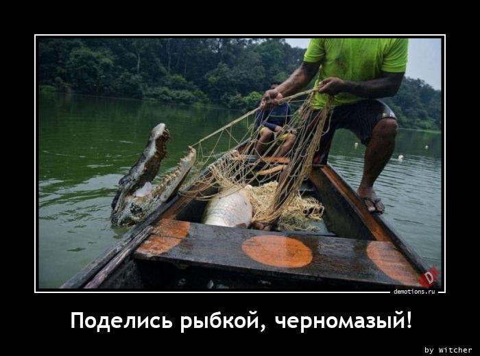 Поделись рыбкой, черномазый!