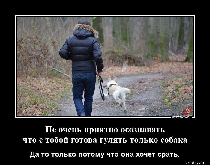Не очень приятно осознавать  что с тобой готова гулять только собака