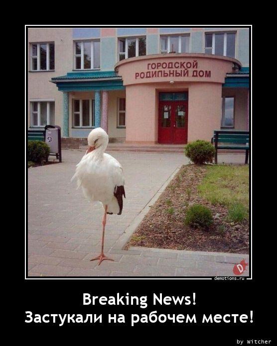 Breaking News! Застукали на рабочем месте!